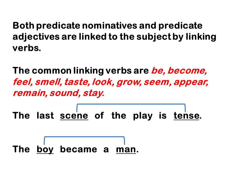 Both predicate nominatives and predicate adjectives are linked to the subject by linking verbs.