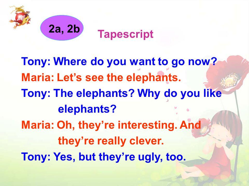 Animal Maria ' s words Tony ' s words Listen again.