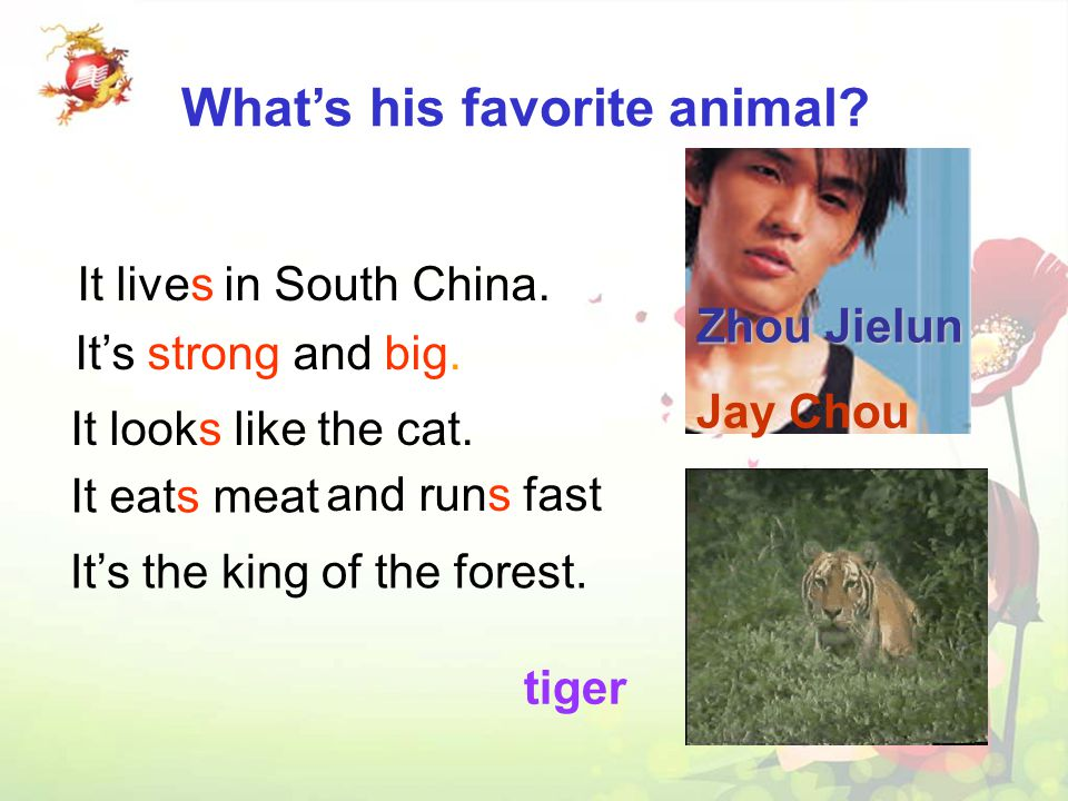 A : What animals do you like ? B: I like elephants.