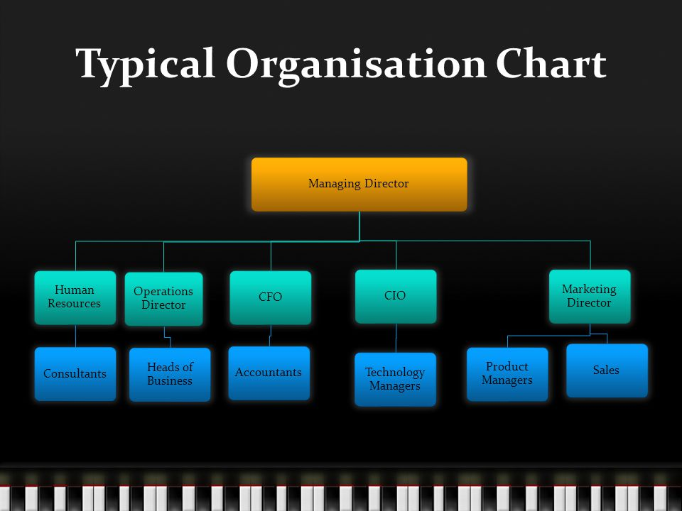 Typical Organisation Chart Managing Director Human Resources Consultants Operations Director Heads of Business CFOAccountantsCIO Technology Managers Marketing Director Product Managers Sales