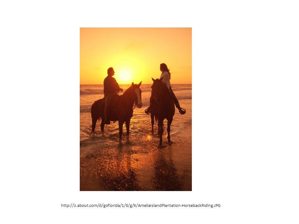 http://z.about.com/d/goflorida/1/0/g/X/AmeliaIslandPlantation-HorsebackRiding.JPG