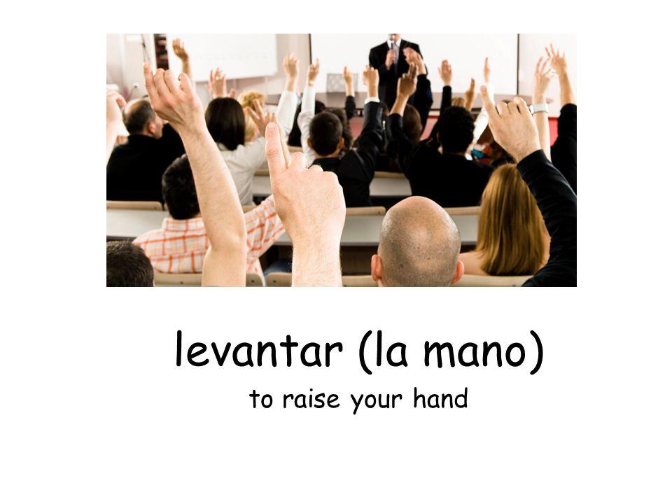 levantar (la mano) to raise your hand