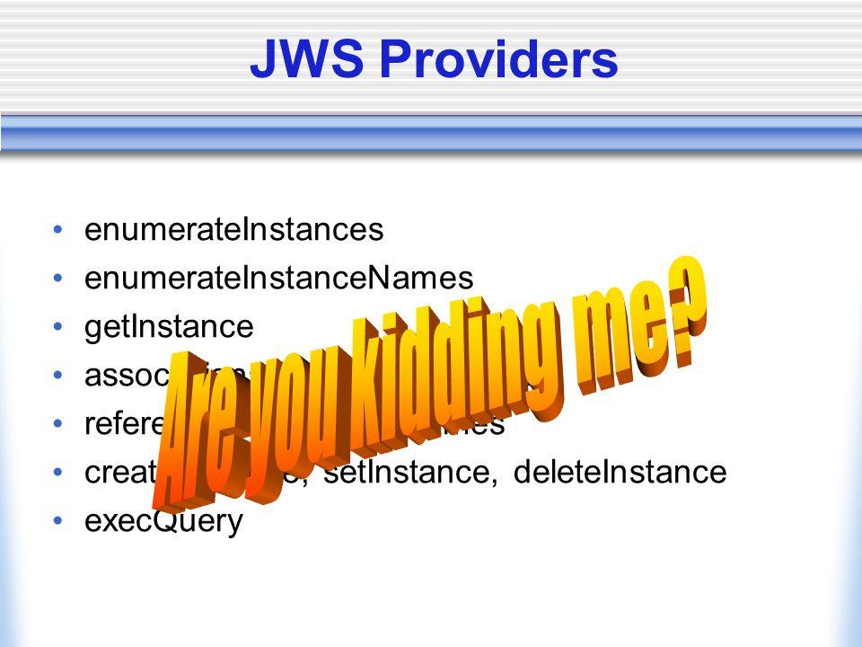 JWS Providers references, referenceNames createInstance, setInstance, deleteInstance execQuery enumerateInstances enumerateInstanceNames getInstance associations, associationNames