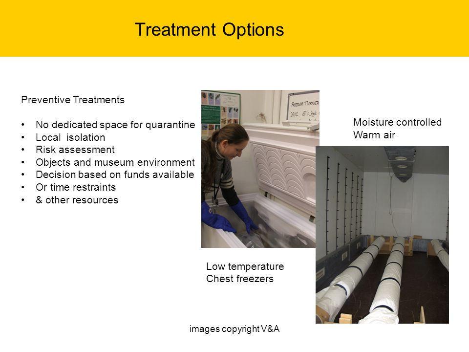 Treatment Options Moisture controlled Warm air Preventive Treatments No dedicated space for quarantine Local isolation Risk assessment Objects and mus