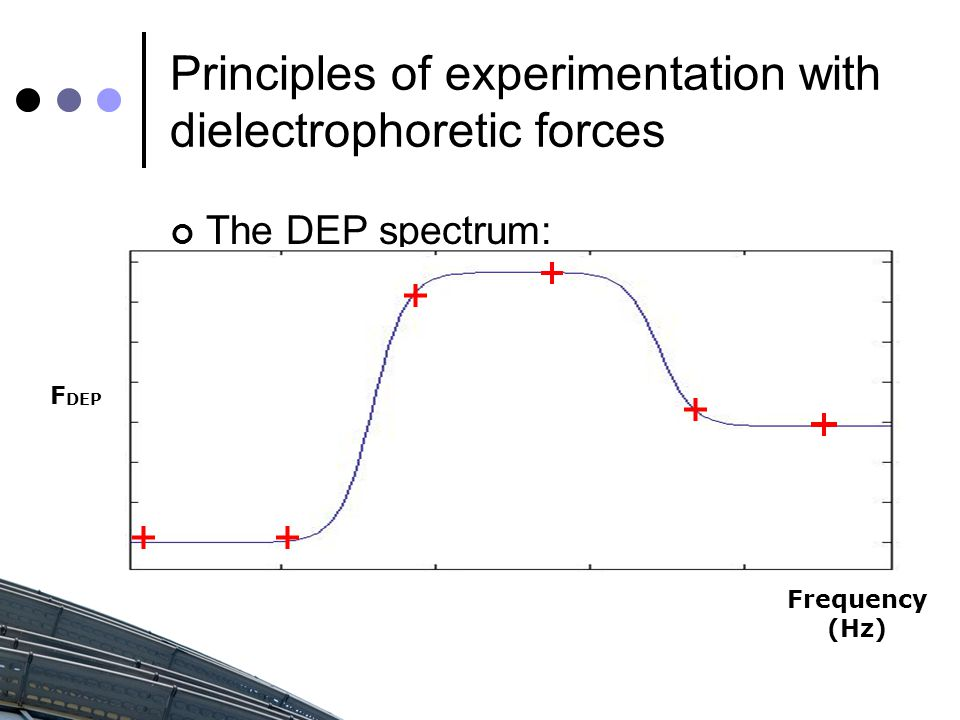 Principles of experimentation with dielectrophoretic forces The DEP spectrum: Frequency (Hz) F DEP