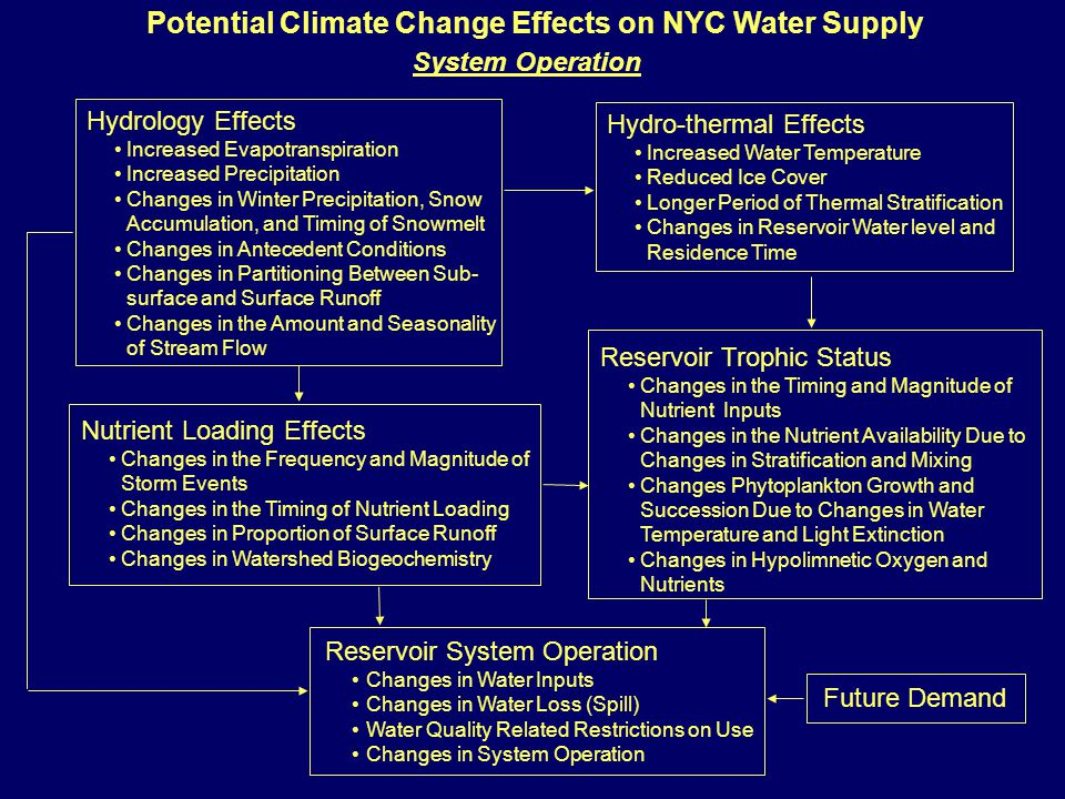 Potential Climate Change Effects on NYC Water Supply System Operation Hydro-thermal Effects Increased Water Temperature Reduced Ice Cover Longer Period of Thermal Stratification Changes in Reservoir Water level and Residence Time Hydrology Effects Increased Evapotranspiration Increased Precipitation Changes in Winter Precipitation, Snow Accumulation, and Timing of Snowmelt Changes in Antecedent Conditions Changes in Partitioning Between Sub- surface and Surface Runoff Changes in the Amount and Seasonality of Stream Flow Nutrient Loading Effects Changes in the Frequency and Magnitude of Storm Events Changes in the Timing of Nutrient Loading Changes in Proportion of Surface Runoff Changes in Watershed Biogeochemistry Reservoir Trophic Status Changes in the Timing and Magnitude of Nutrient Inputs Changes in the Nutrient Availability Due to Changes in Stratification and Mixing Changes Phytoplankton Growth and Succession Due to Changes in Water Temperature and Light Extinction Changes in Hypolimnetic Oxygen and Nutrients Reservoir System Operation Changes in Water Inputs Changes in Water Loss (Spill) Water Quality Related Restrictions on Use Changes in System Operation Future Demand