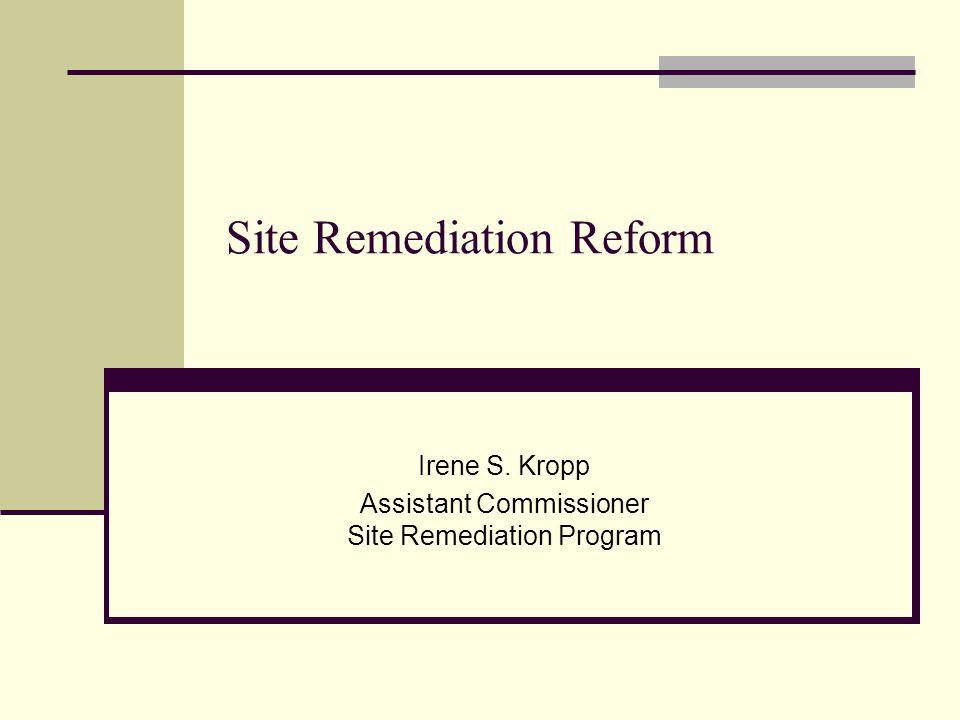 Site Remediation Reform Irene S. Kropp Assistant Commissioner Site Remediation Program