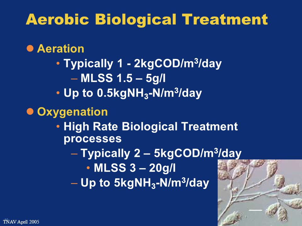 10 TNAV April 2005 Aerobic Biological Treatment Aeration Typically 1 - 2kgCOD/m 3 /day –MLSS 1.5 – 5g/l Up to 0.5kgNH 3 -N/m 3 /day Oxygenation High Rate Biological Treatment processes –Typically 2 – 5kgCOD/m 3 /day MLSS 3 – 20g/l –Up to 5kgNH 3 -N/m 3 /day