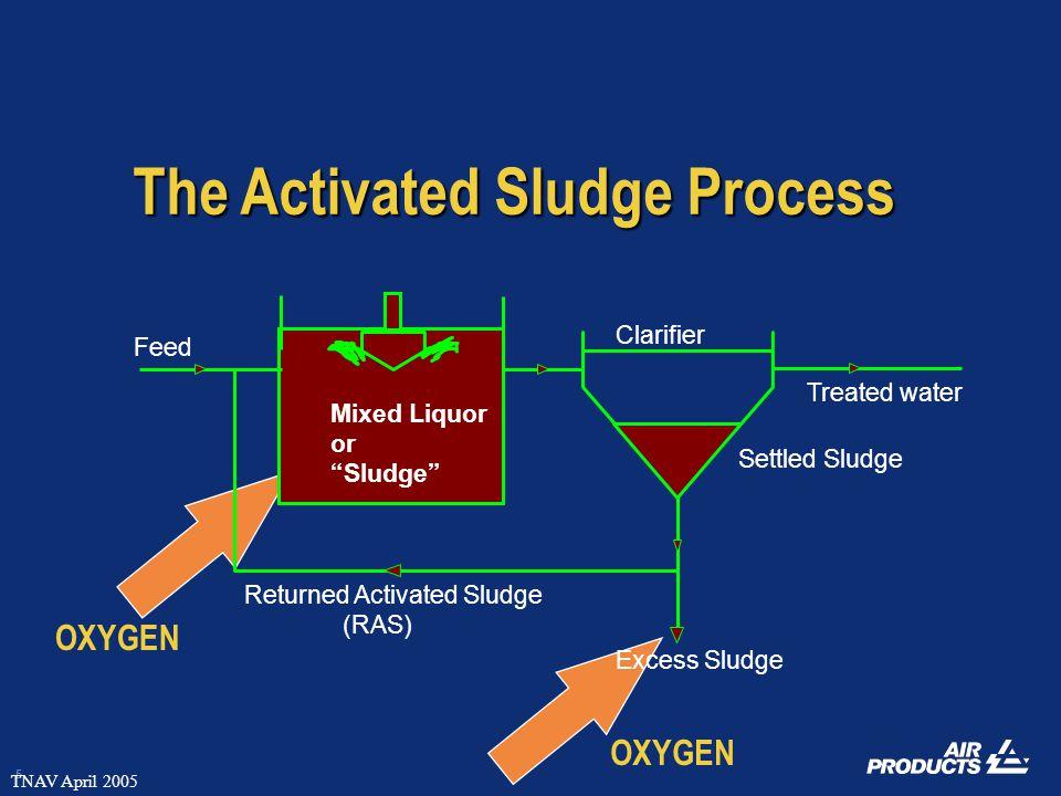 5 TNAV April 2005 Treated water Excess Sludge Clarifier Feed Mixed Liquor or Sludge Returned Activated Sludge (RAS) Settled Sludge The Activated Sludge Process OXYGEN