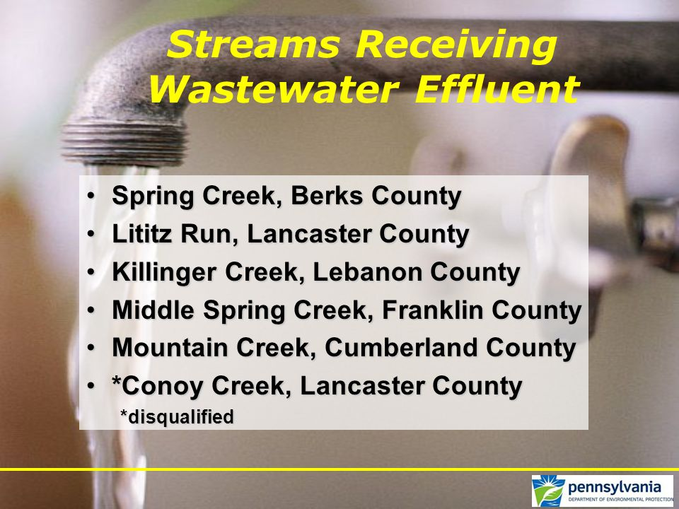 Streams Receiving Wastewater Effluent Spring Creek, Berks CountySpring Creek, Berks County Lititz Run, Lancaster CountyLititz Run, Lancaster County Killinger Creek, Lebanon CountyKillinger Creek, Lebanon County Middle Spring Creek, Franklin CountyMiddle Spring Creek, Franklin County Mountain Creek, Cumberland CountyMountain Creek, Cumberland County *Conoy Creek, Lancaster County*Conoy Creek, Lancaster County*disqualified