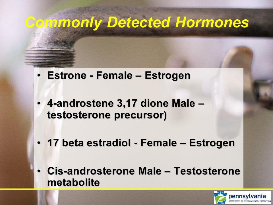 Commonly Detected Hormones Estrone - Female – EstrogenEstrone - Female – Estrogen 4-androstene 3,17 dione Male – testosterone precursor)4-androstene 3,17 dione Male – testosterone precursor) 17 beta estradiol - Female – Estrogen17 beta estradiol - Female – Estrogen Cis-androsterone Male – Testosterone metaboliteCis-androsterone Male – Testosterone metabolite