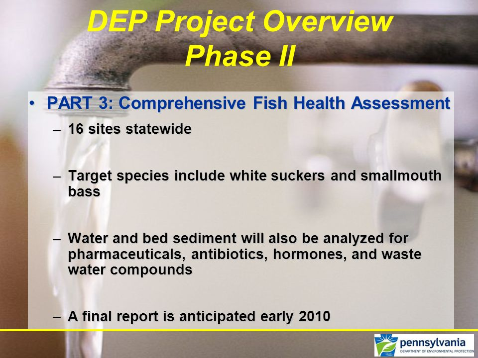 PART 3: Comprehensive Fish Health AssessmentPART 3: Comprehensive Fish Health Assessment –16 sites statewide –Target species include white suckers and smallmouth bass –Water and bed sediment will also be analyzed for pharmaceuticals, antibiotics, hormones, and waste water compounds –A final report is anticipated early 2010 DEP Project Overview Phase II