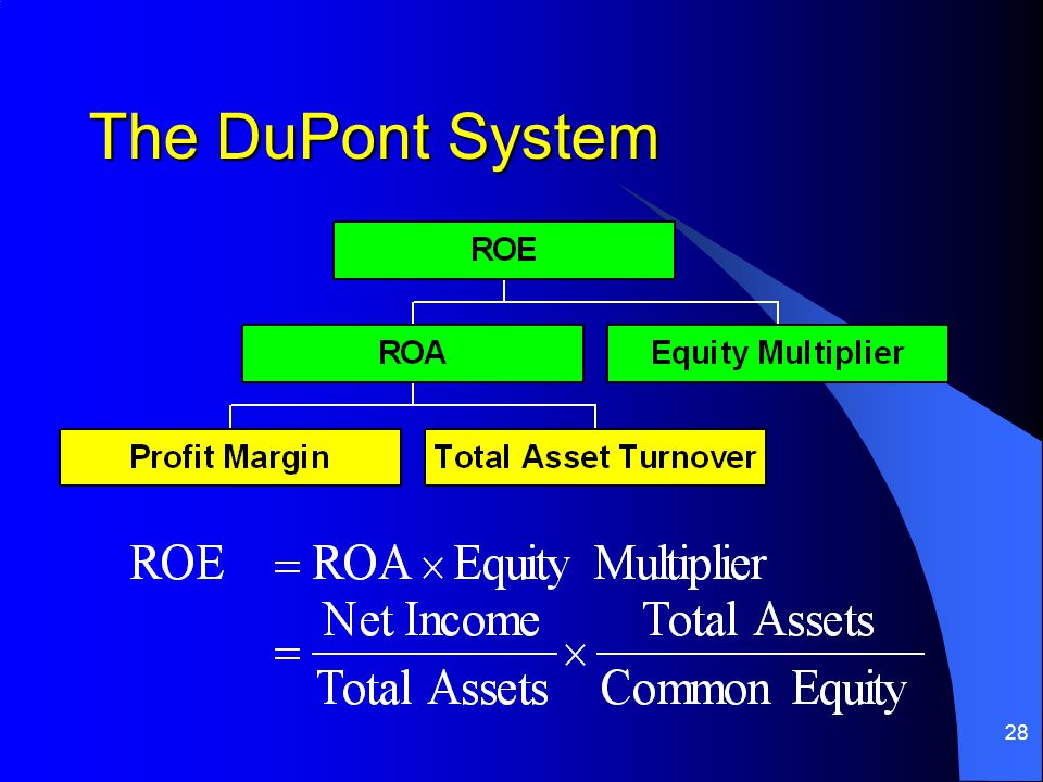 28 The DuPont System
