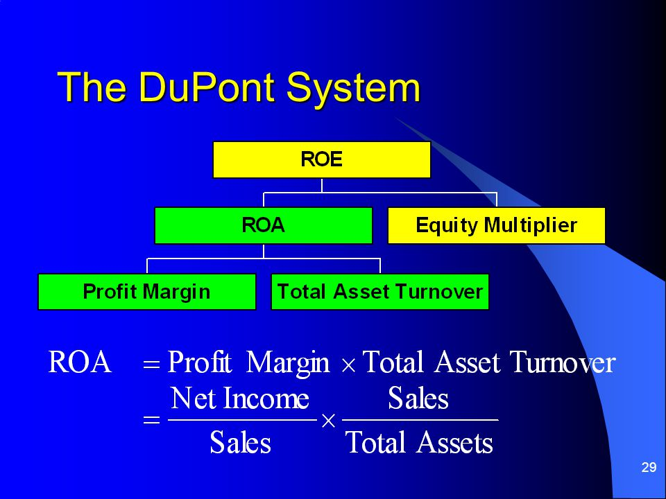 29 The DuPont System