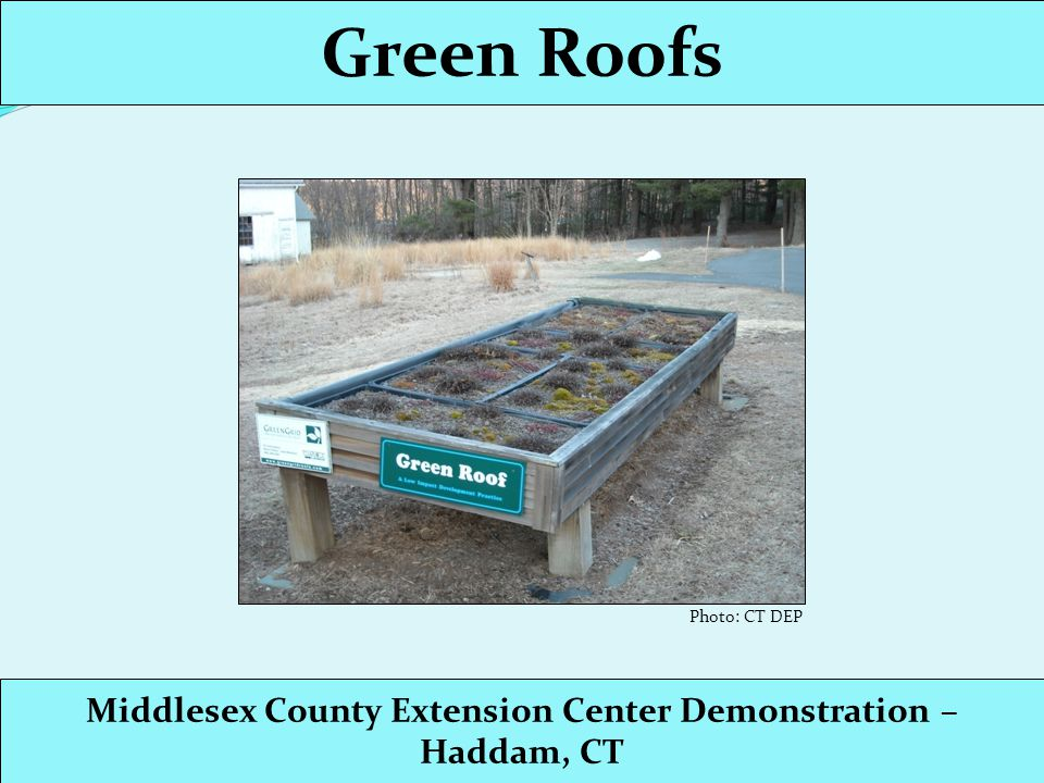 Green Roofs Middlesex County Extension Center Demonstration – Haddam, CT Photo: CT DEP