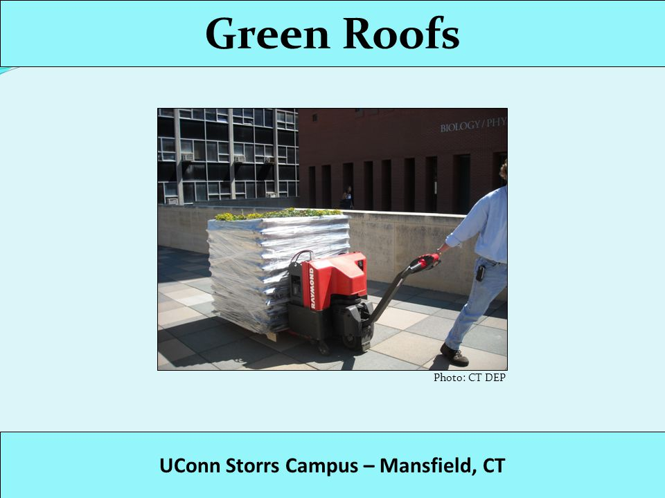 Green Roofs UConn Storrs Campus – Mansfield, CT Photo: CT DEP