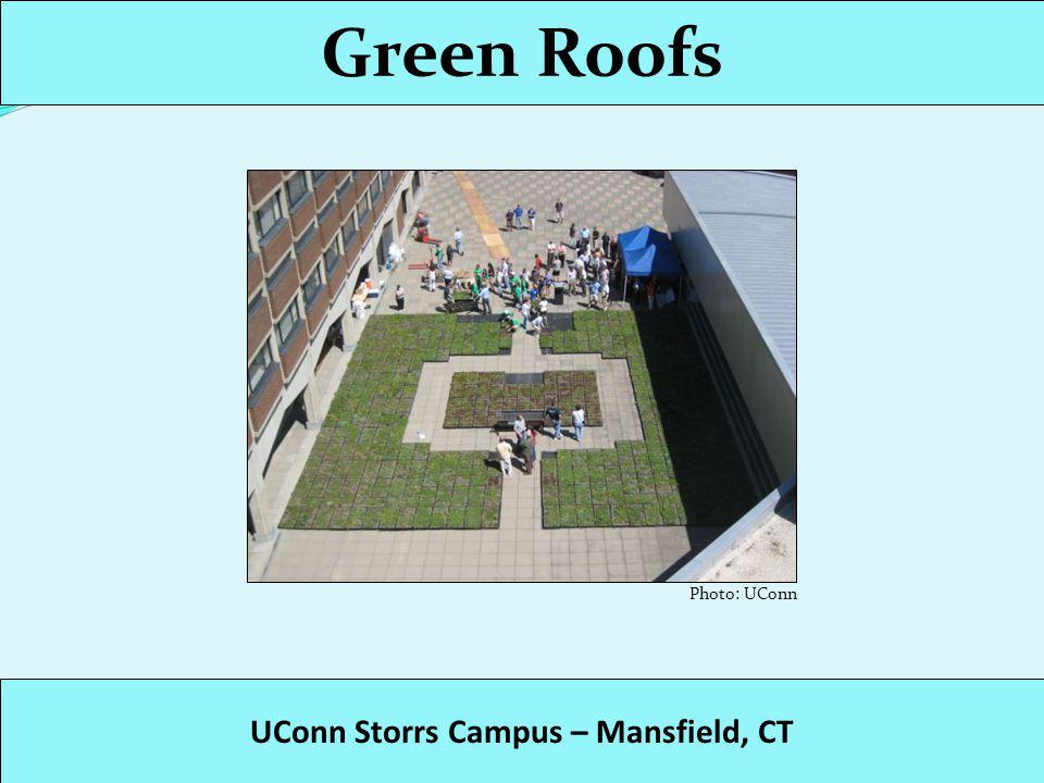 Green Roofs Hollander Building – Hartford, CT Photo: CT DEP