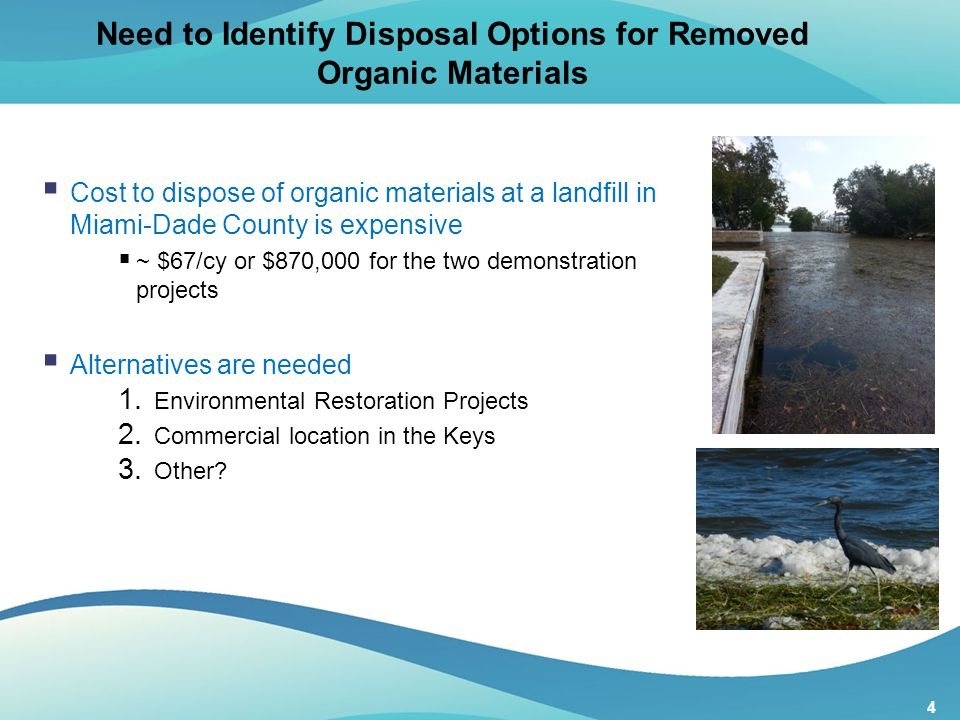 4 Need to Identify Disposal Options for Removed Organic Materials  Cost to dispose of organic materials at a landfill in Miami-Dade County is expensi