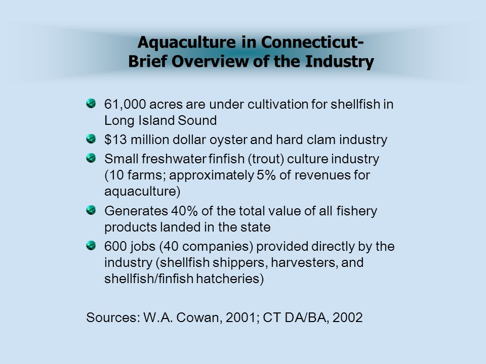61,000 acres are under cultivation for shellfish in Long Island Sound $13 million dollar oyster and hard clam industry Small freshwater finfish (trout) culture industry (10 farms; approximately 5% of revenues for aquaculture) Generates 40% of the total value of all fishery products landed in the state 600 jobs (40 companies) provided directly by the industry (shellfish shippers, harvesters, and shellfish/finfish hatcheries) Sources: W.A.