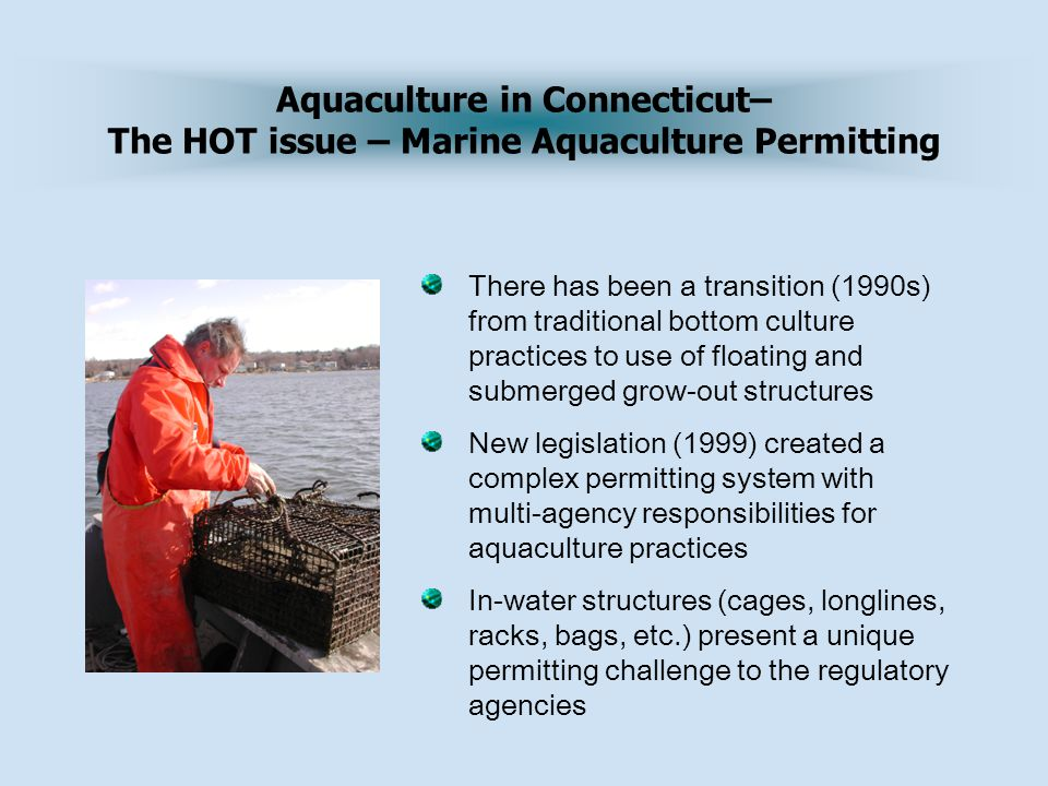 Aquaculture in Connecticut– The HOT issue – Marine Aquaculture Permitting There has been a transition (1990s) from traditional bottom culture practices to use of floating and submerged grow-out structures New legislation (1999) created a complex permitting system with multi-agency responsibilities for aquaculture practices In-water structures (cages, longlines, racks, bags, etc.) present a unique permitting challenge to the regulatory agencies
