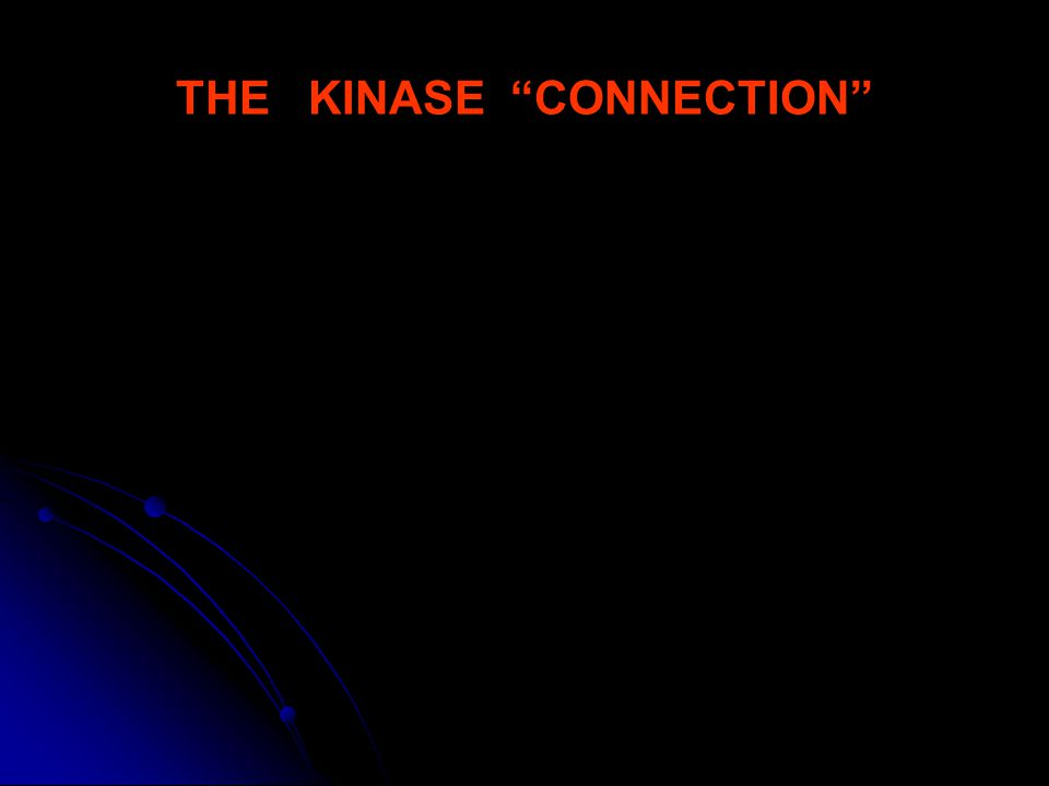 THE KINASE CONNECTION