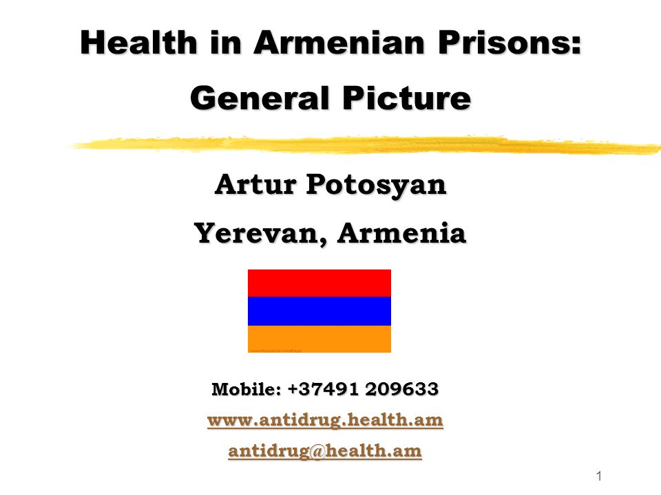 1 Health in Armenian Prisons: General Picture Artur Potosyan Yerevan, Armenia Mobile: +37491 209633 www.antidrug.health.am antidrug@health.am
