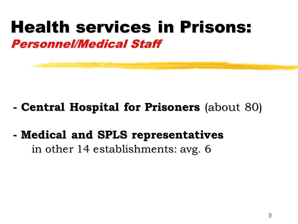 9 - Central Hospital for Prisoners (about 80) - Medical and SPLS representatives in other 14 establishments: avg.