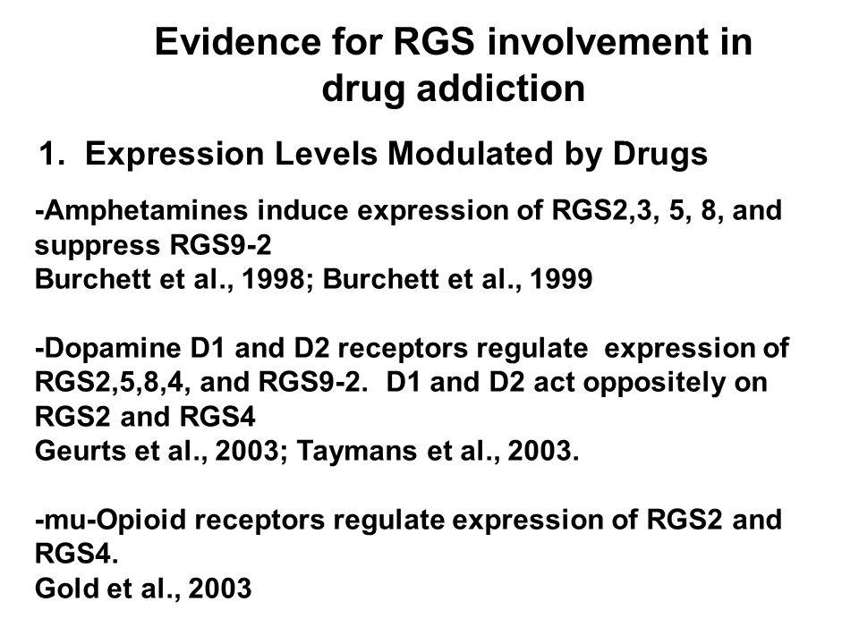 RGS9 immunostaining in medium spiny cells of mouse striatum 10  m CPu NAc