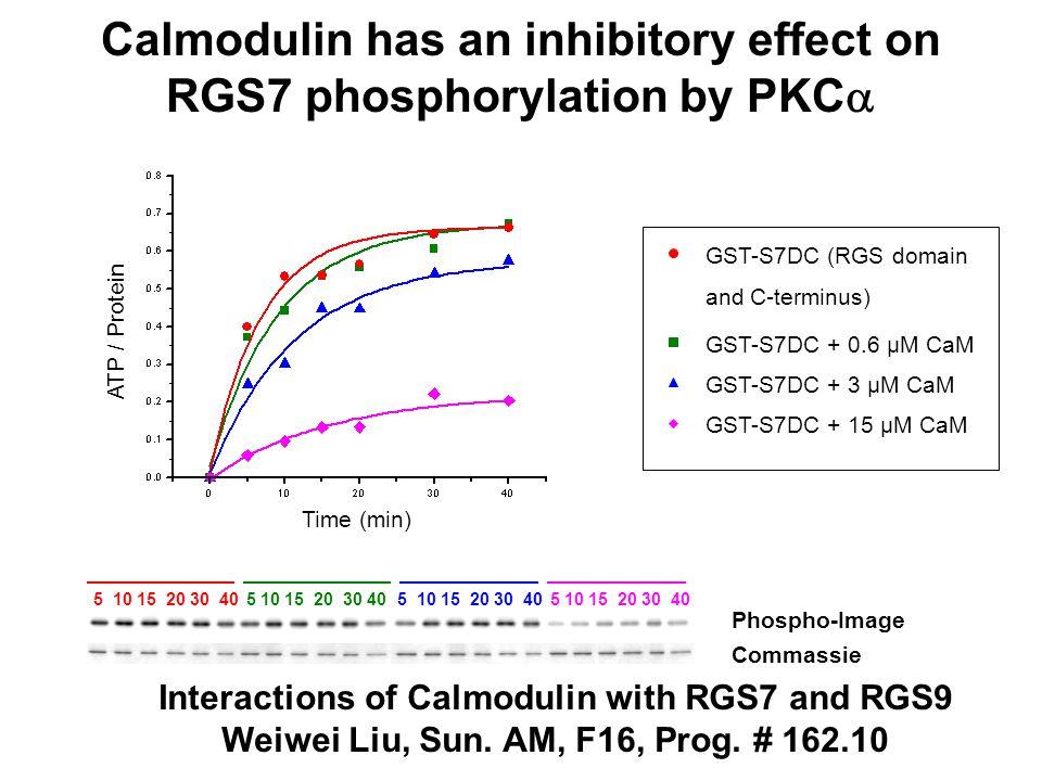 Alternative splicing of the RGS7 gene GGL DEP mRNA (2.3 kb) Alternatively spliced Exon1- 16 a1 a2 a3 Exon 17 RGS 5'- * -3' a.a.