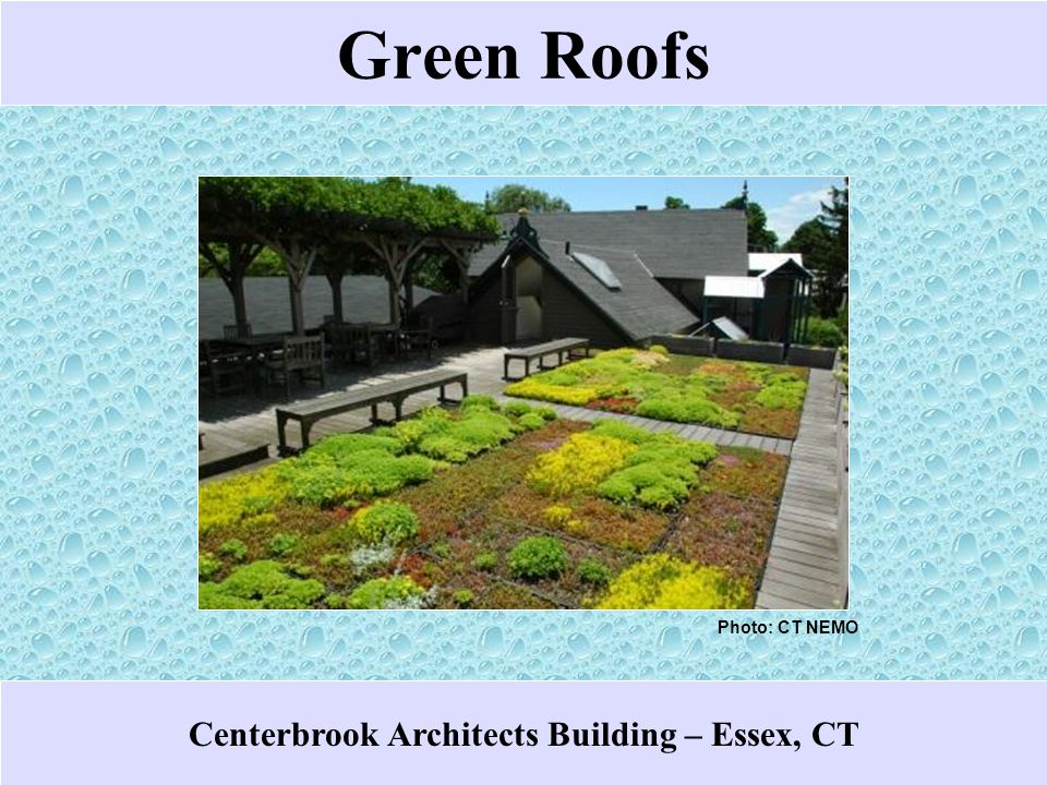 Green Roofs Middlesex Extension Center Demonstration – Haddam, CT Photo: CT DEP