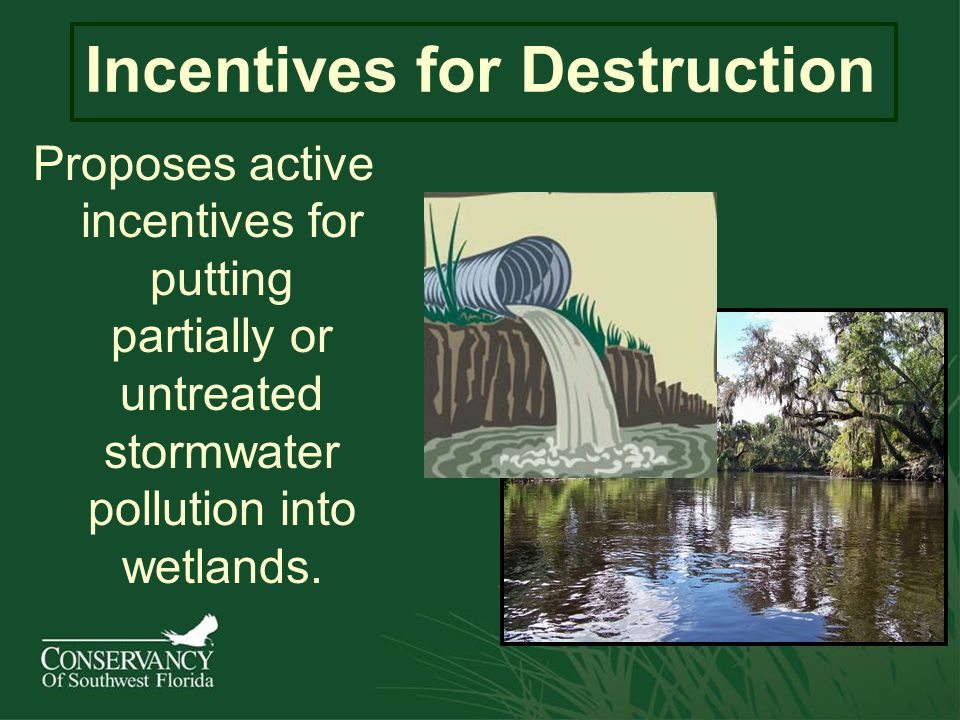 Incentives for Destruction Proposes active incentives for putting partially or untreated stormwater pollution into wetlands.