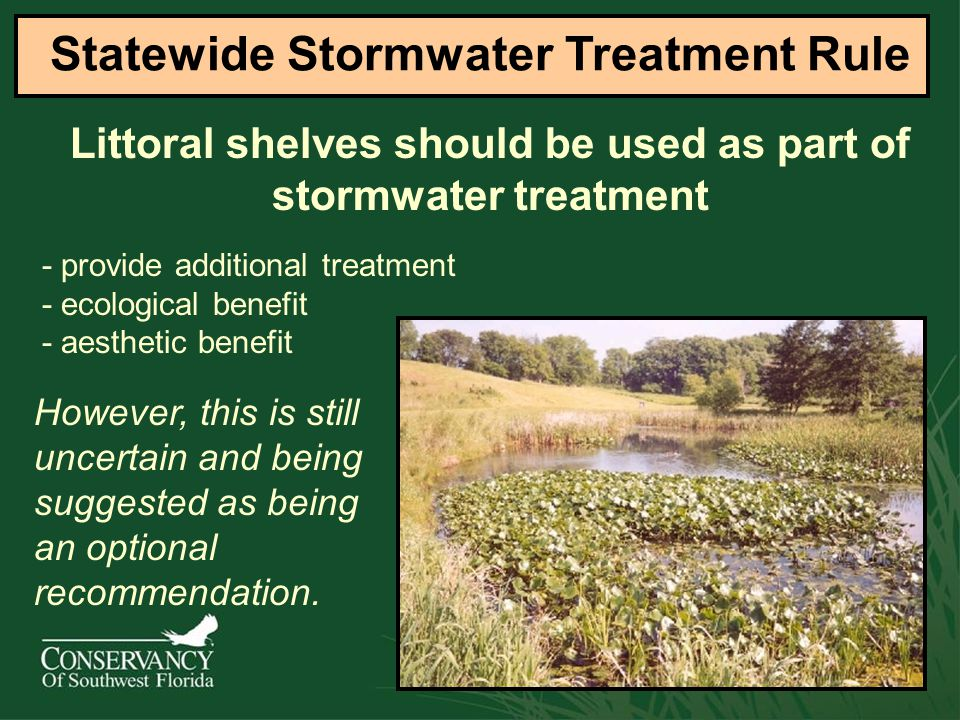 Littoral shelves should be used as part of stormwater treatment Statewide Stormwater Treatment Rule - provide additional treatment - ecological benefit - aesthetic benefit However, this is still uncertain and being suggested as being an optional recommendation.