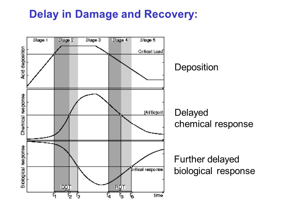 Delay in Damage and Recovery: Deposition Delayed chemical response Further delayed biological response