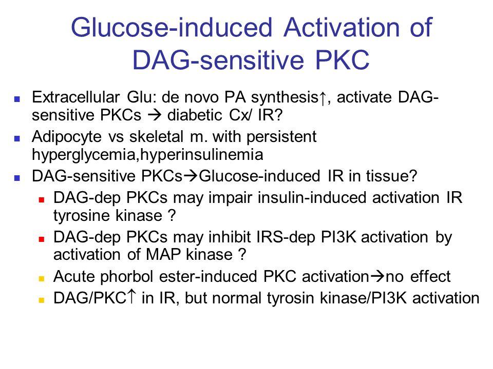 Glucose-induced Activation of DAG-sensitive PKC Extracellular Glu: de novo PA synthesis↑, activate DAG- sensitive PKCs  diabetic Cx/ IR? Adipocyte vs