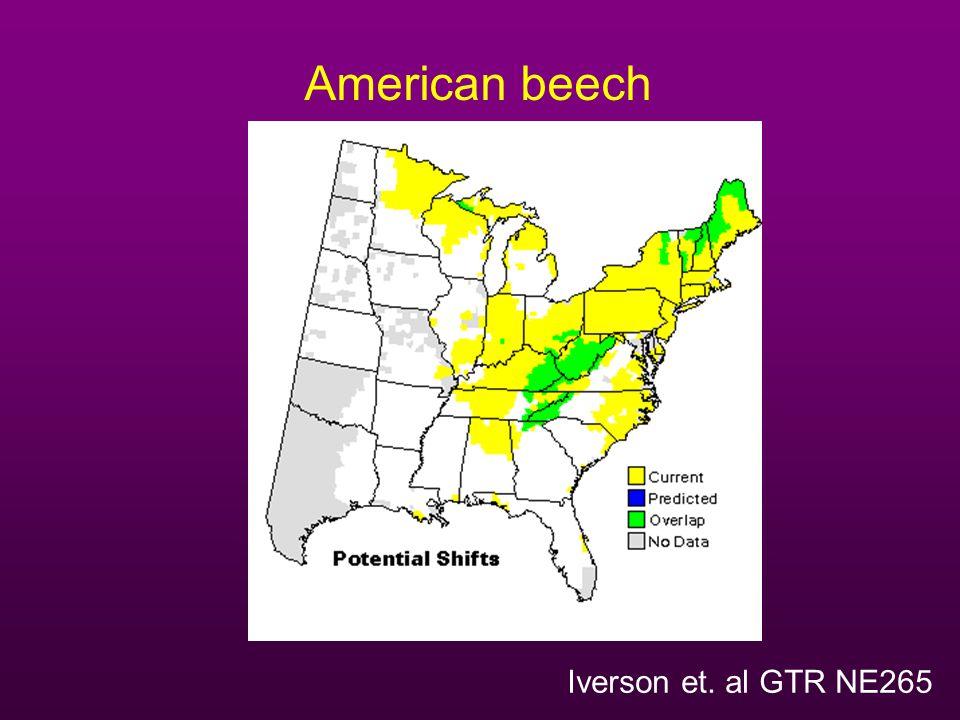American beech Iverson et. al GTR NE265