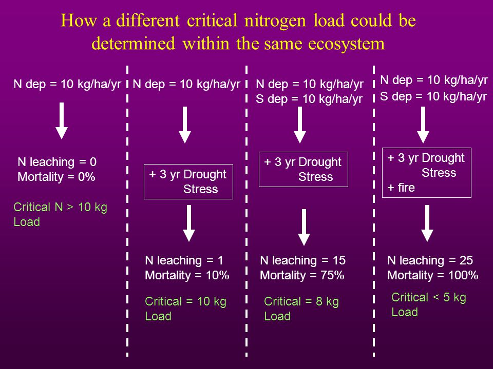 How a different critical nitrogen load could be determined within the same ecosystem N dep = 10 kg/ha/yr N leaching = 0 Mortality = 0% Critical N > 10 kg Load N dep = 10 kg/ha/yr N leaching = 1 Mortality = 10% Critical = 10 kg Load + 3 yr Drought Stress N dep = 10 kg/ha/yr S dep = 10 kg/ha/yr N leaching = 15 Mortality = 75% Critical = 8 kg Load + 3 yr Drought Stress N dep = 10 kg/ha/yr N leaching = 25 Mortality = 100% Critical < 5 kg Load + 3 yr Drought Stress + fire S dep = 10 kg/ha/yr