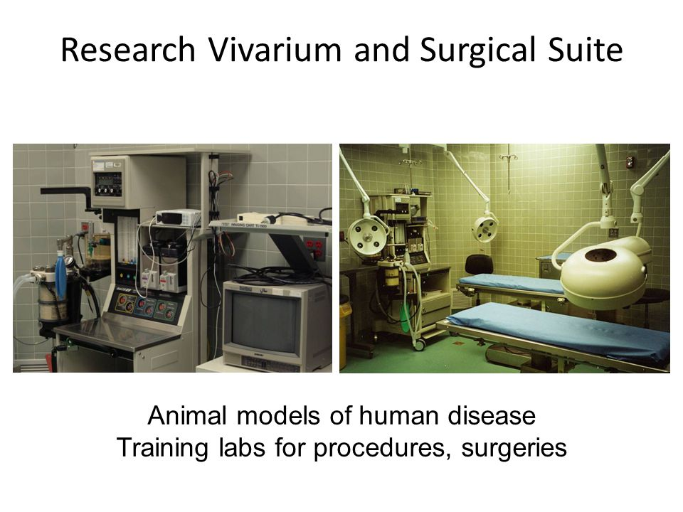 Research Vivarium and Surgical Suite Animal models of human disease Training labs for procedures, surgeries