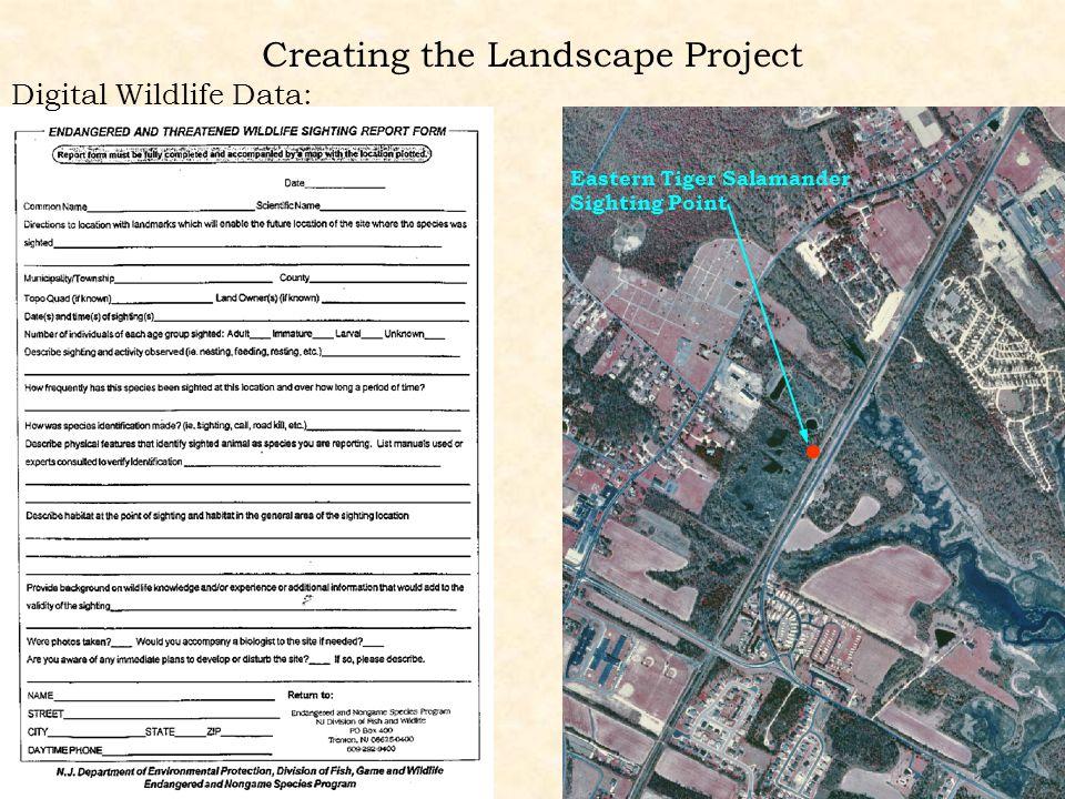 Creating the Landscape Project Digital Wildlife Data: Eastern Tiger Salamander Sighting Point