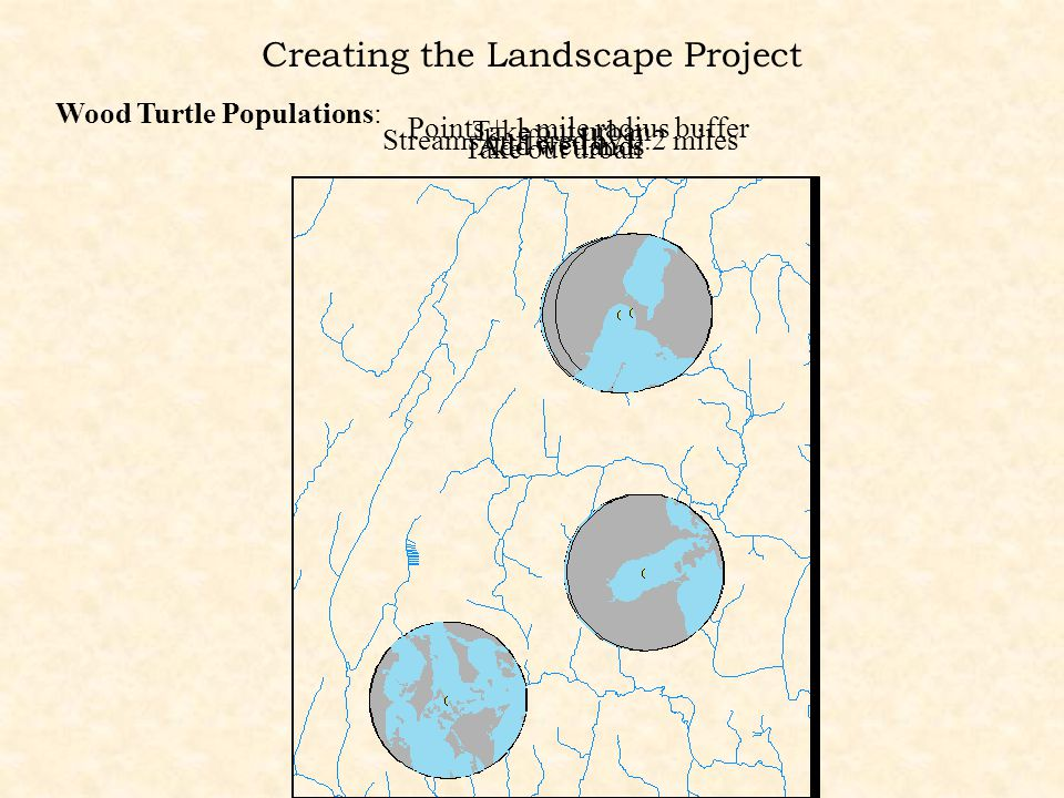 Creating the Landscape Project Wood Turtle Populations: Points + 1 mile radius buffer Streams buffered by 0.2 miles Take out urban Add wetlands