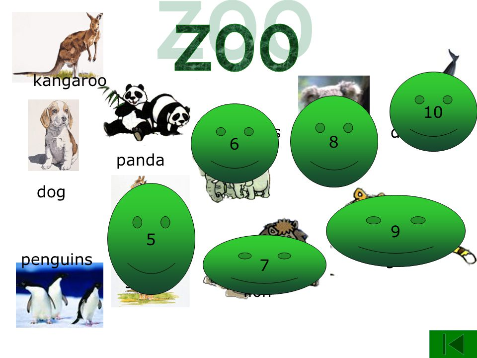 panda dog giraffe kangaroo penguins elephants koala lion tiger dolphin 4 5 6 7 8 9 10