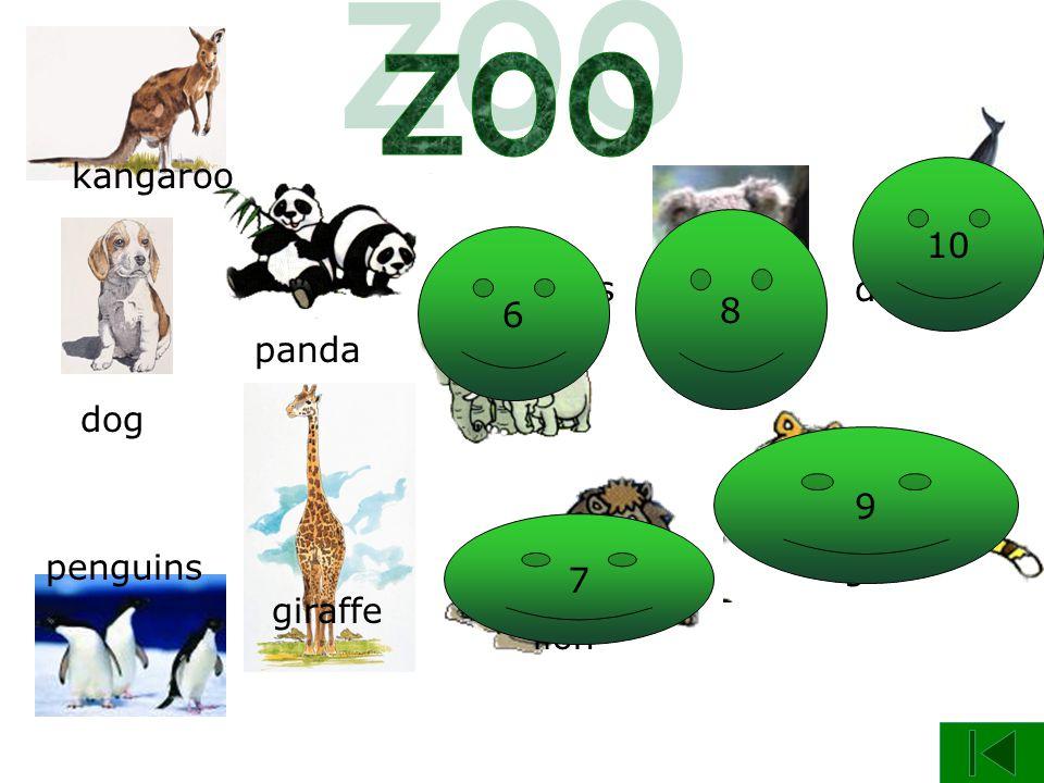 panda dog giraffe kangaroo penguins elephants koala lion tiger dolphin 5 6 7 8 9 10
