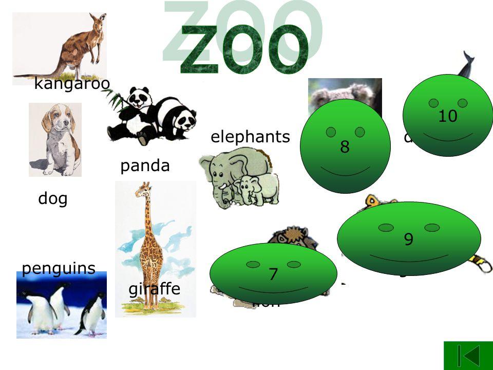 panda dog giraffe kangaroo penguins elephants koala lion tiger dolphin 6 7 8 9 10