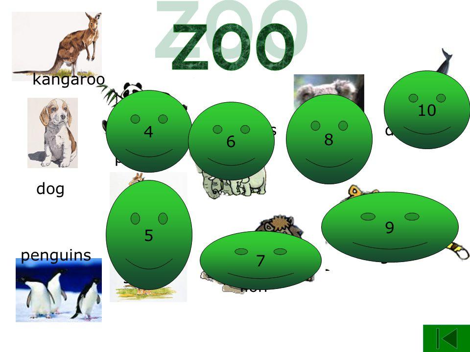 panda dog giraffe kangaroo penguins elephants koala lion tiger dolphin 4 3 5 6 7 8 9 10