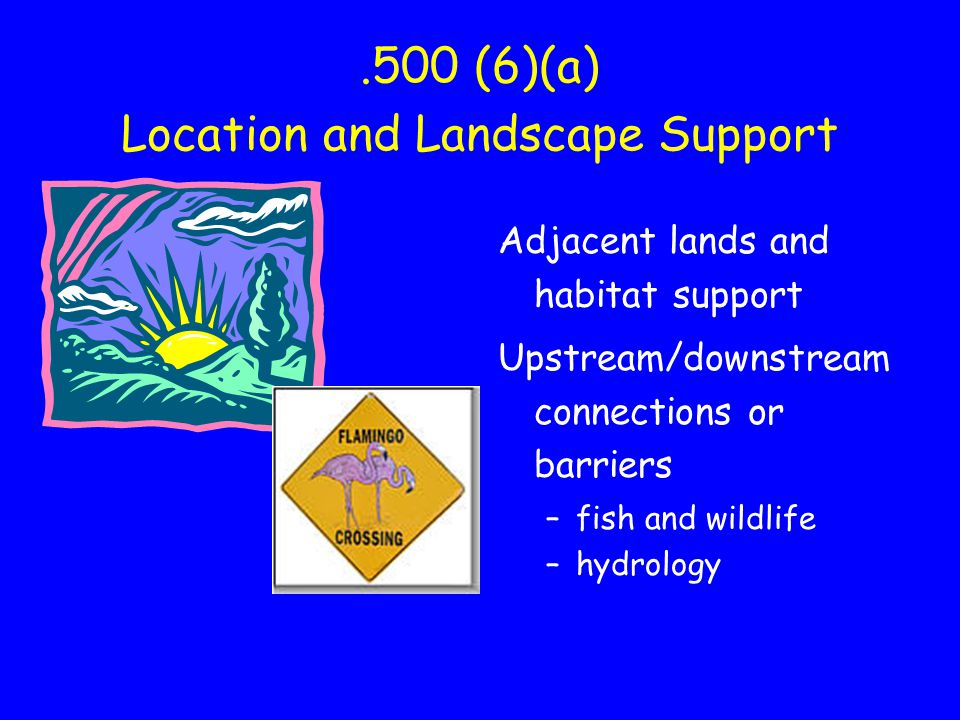 .500 (6)(a) Location and Landscape Support Adjacent lands and habitat support Upstream/downstream connections or barriers –fish and wildlife –hydrology