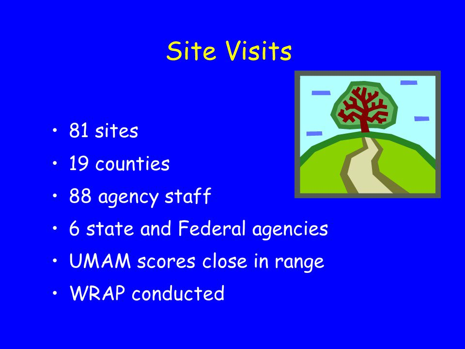 Site Visits 81 sites 19 counties 88 agency staff 6 state and Federal agencies UMAM scores close in range WRAP conducted