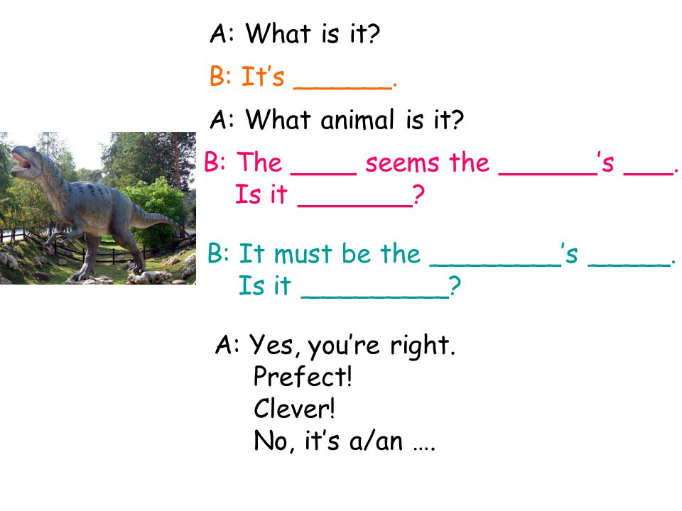 A: What animal is it.B: The ____ seem the ______'s ___.