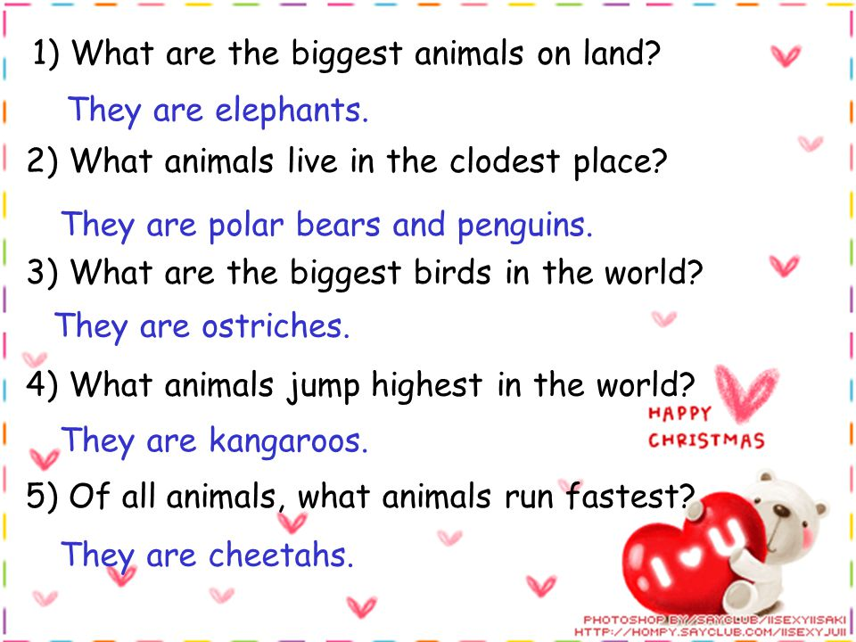 1) What are the biggest animals on land. They are elephants.