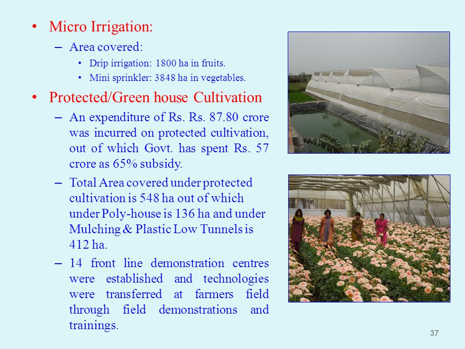Micro Irrigation: – Area covered: Drip irrigation: 1800 ha in fruits. Mini sprinkler: 3848 ha in vegetables. Protected/Green house Cultivation – An ex