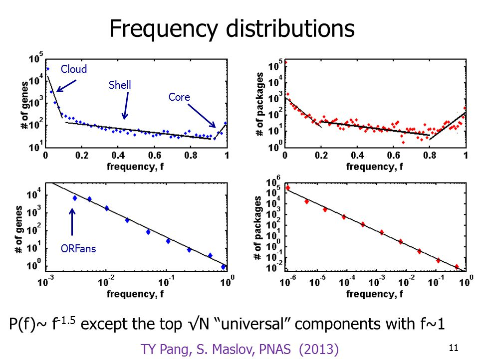 Frequency distributions P(f)~ f -1.5 except the top √N universal components with f~1 11 Cloud Shell Core ORFans TY Pang, S.
