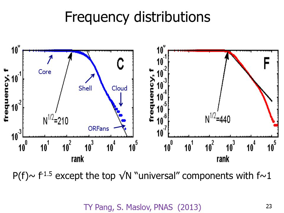 Frequency distributions P(f)~ f -1.5 except the top √N universal components with f~1 23 Shell Core ORFans Cloud TY Pang, S.